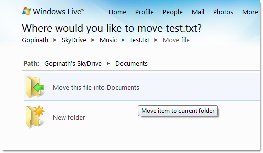WIndows_Live_Sky_Drive_Moving_Files_3