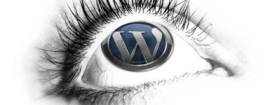 download_wordpress_wallpaper_eye
