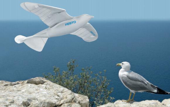 robotic_seagull