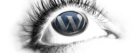 download_wordpress_wallpaper_eye