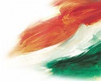 indian Flag by Daran Talbutt