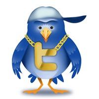 twitter_ninja